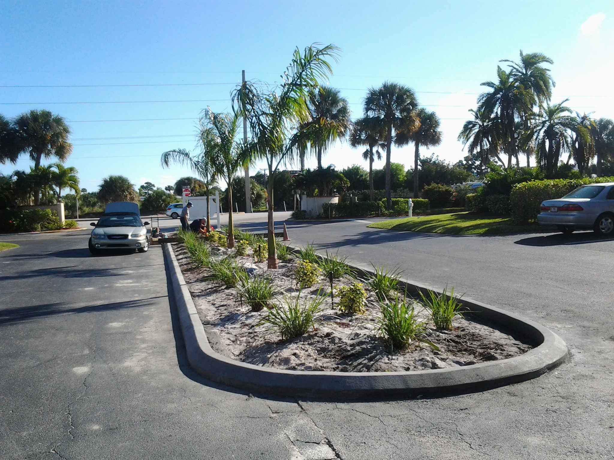D curb, association, parking lot, landscaping, repair, driveways